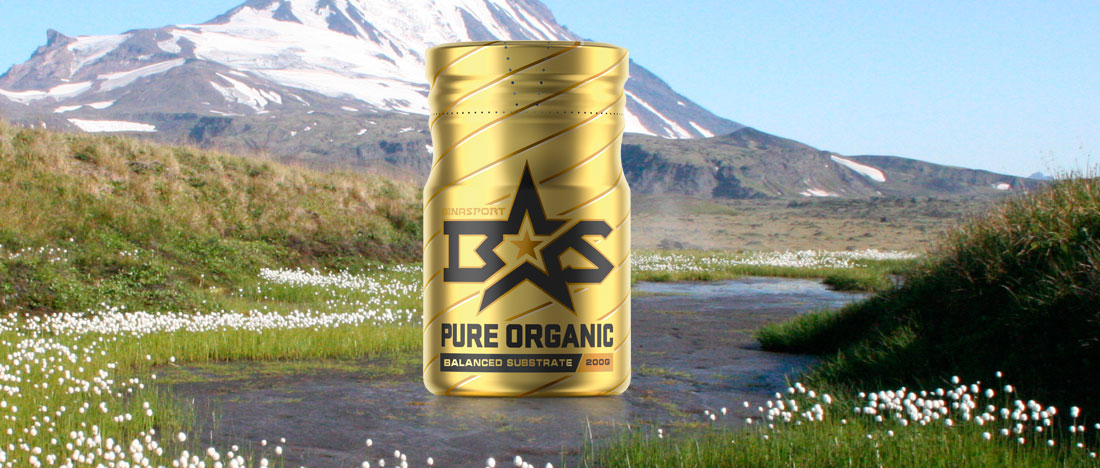 Explanatory Statement for Pure Organic